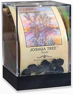 Best joshua tree plant Reviews