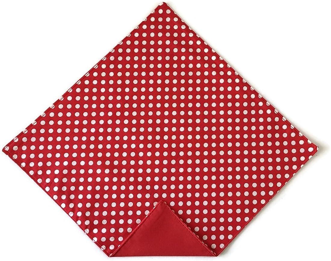 Holiday Bow Ties Mens Handkerchief Red and White Polka Dots Pocket Square