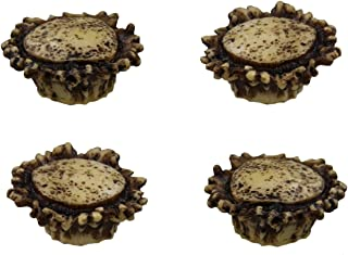 Old River Antler Drawer / Cabinet Knobs (4 Pack) - 2 Sizes of Screws and Washers Included