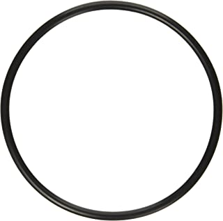 Pentair 272541 O-Ring Replacement Pool/Spa Filter and Valve
