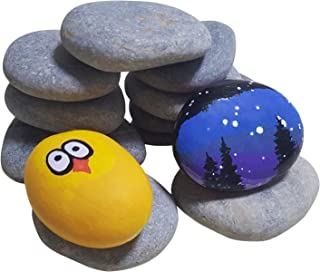 ShoppeWatch River Rocks for Painting – Smooth Crafts Paint Stones – Flat Signing Surface – Kindness Decorative Pebbles – 12 Pcs, 2-3 inches, Approx 3.75 lbs PS07