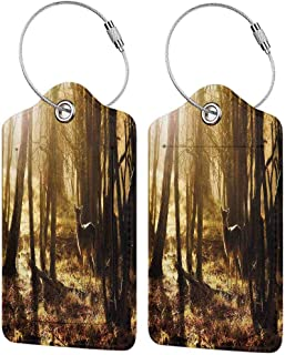 Cabin Decor Baggage Tags for Luggage Tags for Kids Young Deer at Sunset in the Forest National Park Outdoors Netherlands Photo [Labels w/Privacy Cover]Yellow Brown 4 packs
