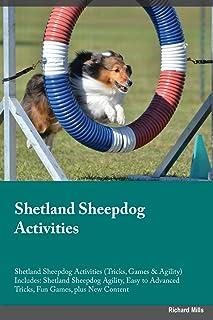 Mejor Shetland Sheepdog Agility de 2021 - Mejor valorados y revisados