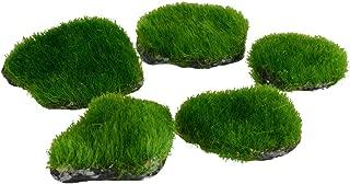 Underwater Treasures 65326 Mini Moss Rock Plant