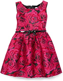 f6b12a579a2f Amazon.com: The Children's Place - Special Occasion / Dresses ...