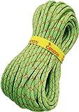 Tendon Smartlite Standard-Seil, 9,8 mm, Grün, 80 m