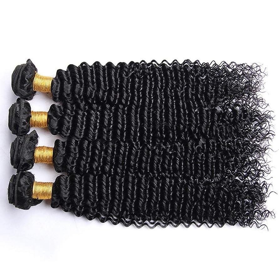 ある代替案いたずらIsikawan 人間の髪織り横糸ナチュラルカラーアフロ変態カーリー人間の髪の毛1バンドルブラジル100%未処理 (色 : ブラック, サイズ : 28 inch)