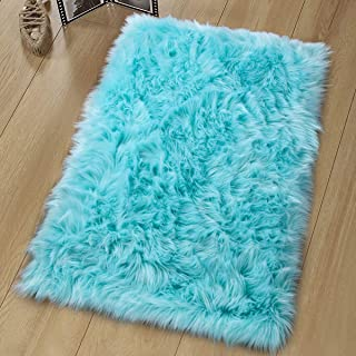 Noahas Luxury Fluffy Rugs Bedroom Furry Carpet Bedside Sheepskin Area Rugs Children Play Princess Room Decor Rug, 2ft x 3ft, Light Blue