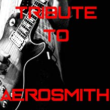 Aerosmith Medley: Pink / Walk This Way / Dream On / Janie's Got a Gun / Sweet Emotion / Fine / Love in a Elevator / Big Ten Inch Record / Toys in the Attic / Angel / Dude Looks Like a Lady / I Don't Wanna Miss a Thing