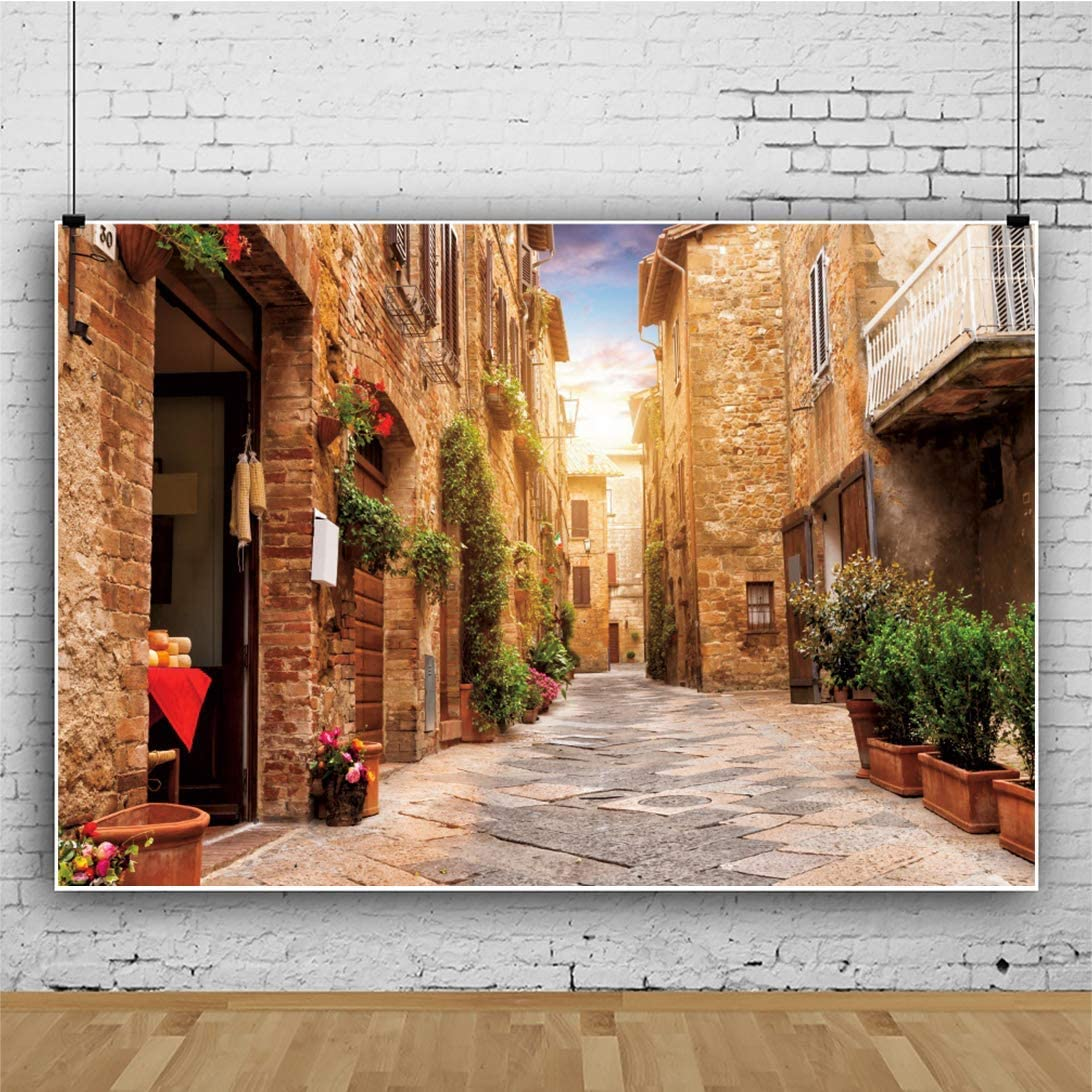 6x4ft Italy Venice Famous Scenic Spot Backdrop European Gothic The Doges Palace Historical Building Archway Long Corridor Photography Backdrop Travel Wedding Adult Portrait Studio Props