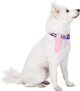 Blueberry Pet 10+ Patterns Bon Voyage Dog Collars with Personalized Option