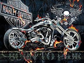 5D DIY Diamond Painting Kit Full Square Drill Motorcycle Car Skull Shiny Rhinestone Cross..