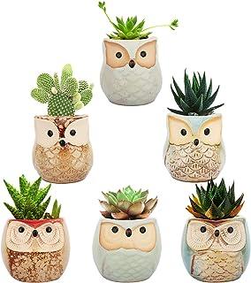 Lewondr Succulents Flowerpots, 6 Pack 2.5 inch Owl Flower Pot Bonsai Plant Pots Ceramics Planter Container Set for Home Of...