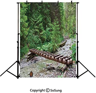 9x16Ft Vinyl Apartment Decor Backdrop for Photography,Handmade Wooden Bridge and Mossy Mountain River in the Deep Forest Transylvania Romania Decorative Background Newborn Baby Photoshoot Portrait Stu