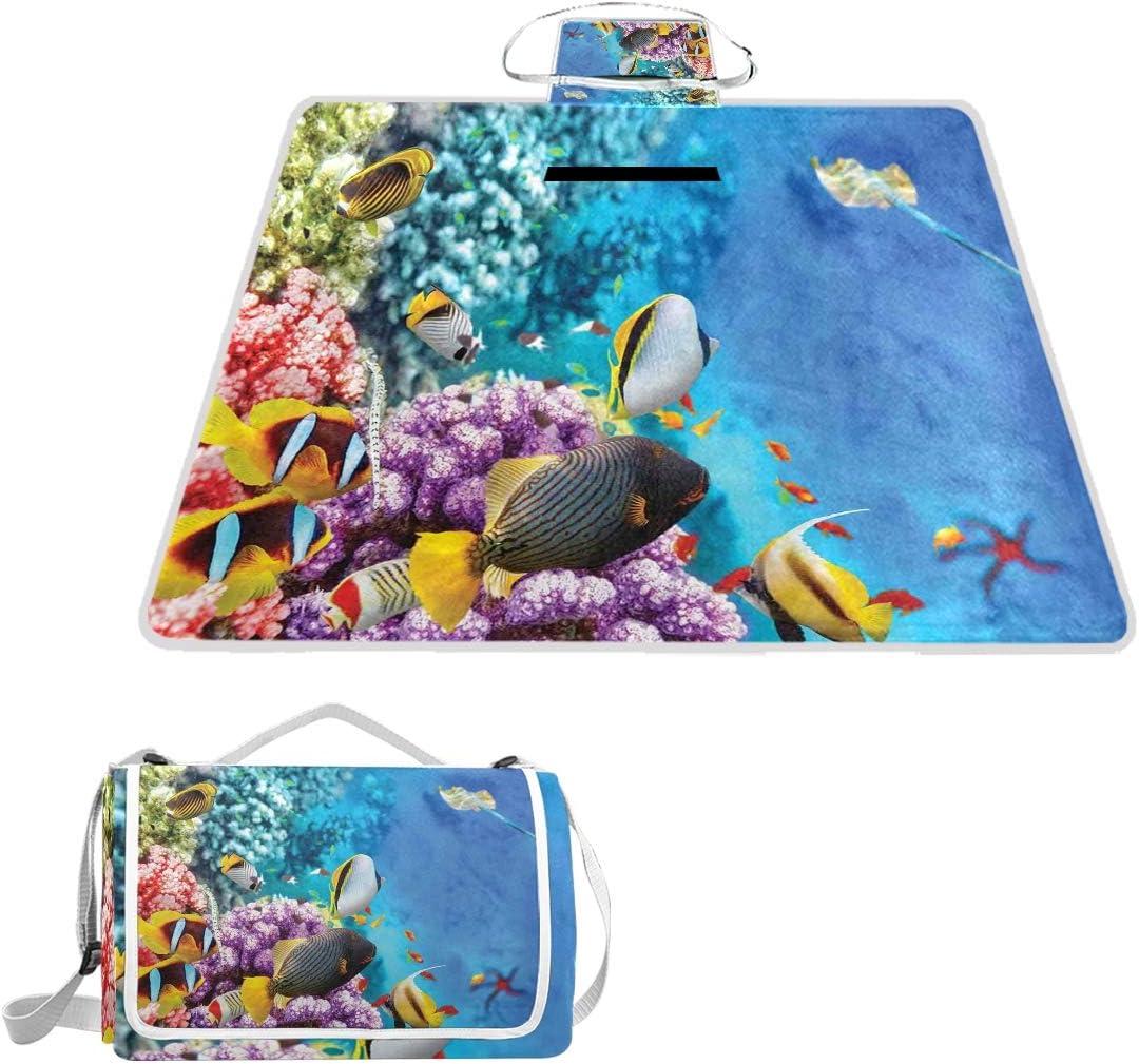 MATEKULI Outdoor Max 51% OFF Picnic Superlatite Blanket Clear Trop and Corals Underwater