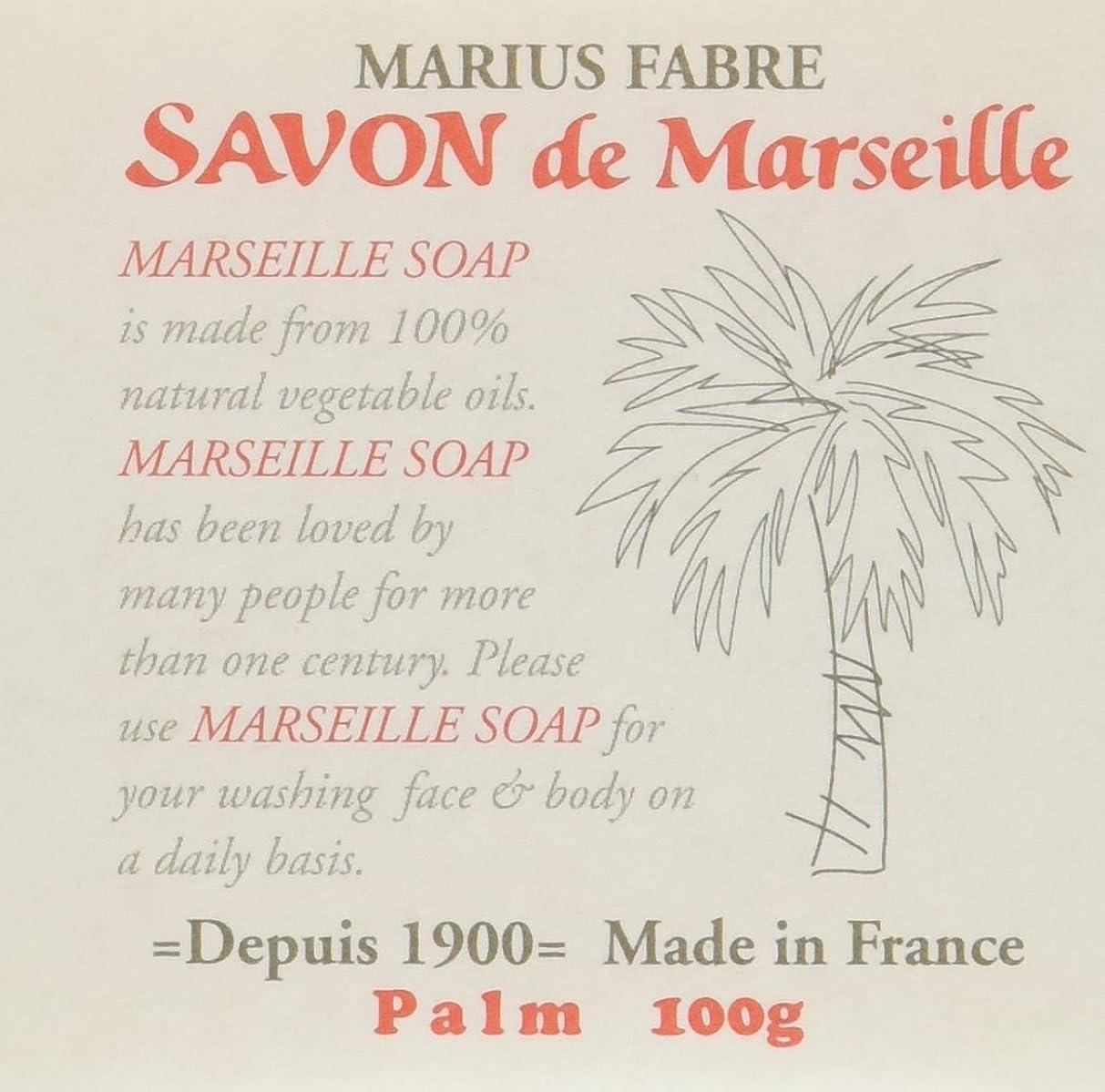 砲撃難しいバラバラにするサボン ド マルセイユ パーム 100g