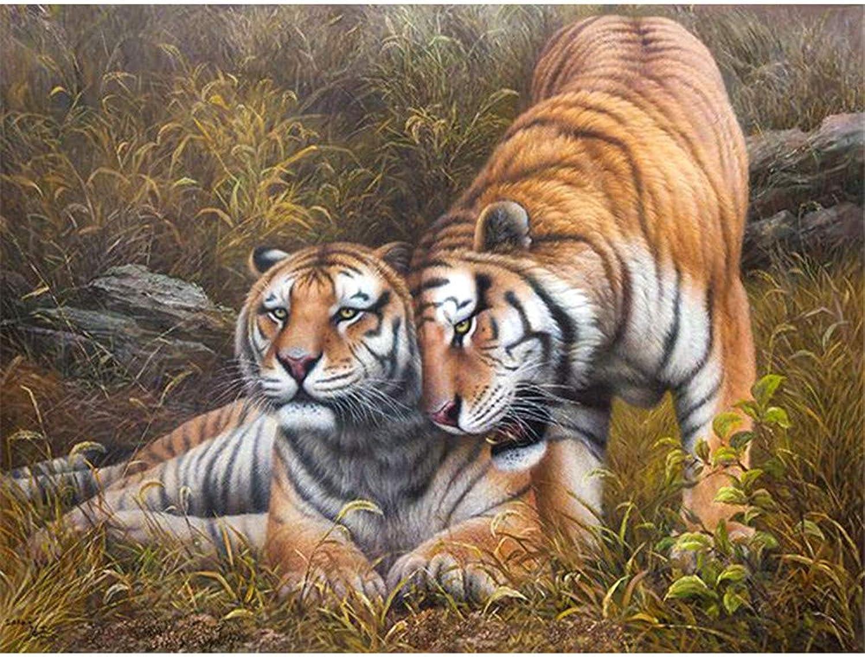 Malen Nach Zahlen Zahlen Zahlen 2 Tiger Spielen Im Gras Home Decor