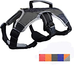 disabled dog harness