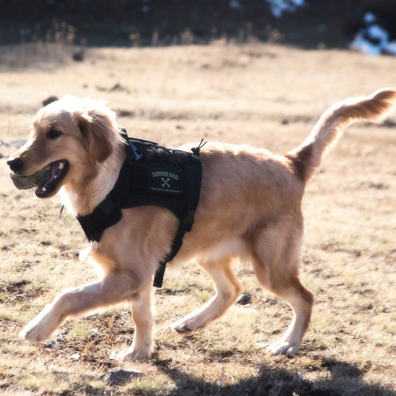 OneTigrey Tactical Service Dog Vest  WaterResistant Comfortable Military Patrol K9 Dog Harness with Handle (Medium, Black)