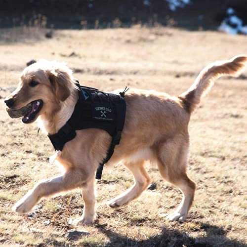 Dog Harness for Hiking: Amazon com