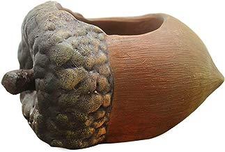 Gosear Macetas de Resina Para Maceta Suculento Cactus Planta Avellana