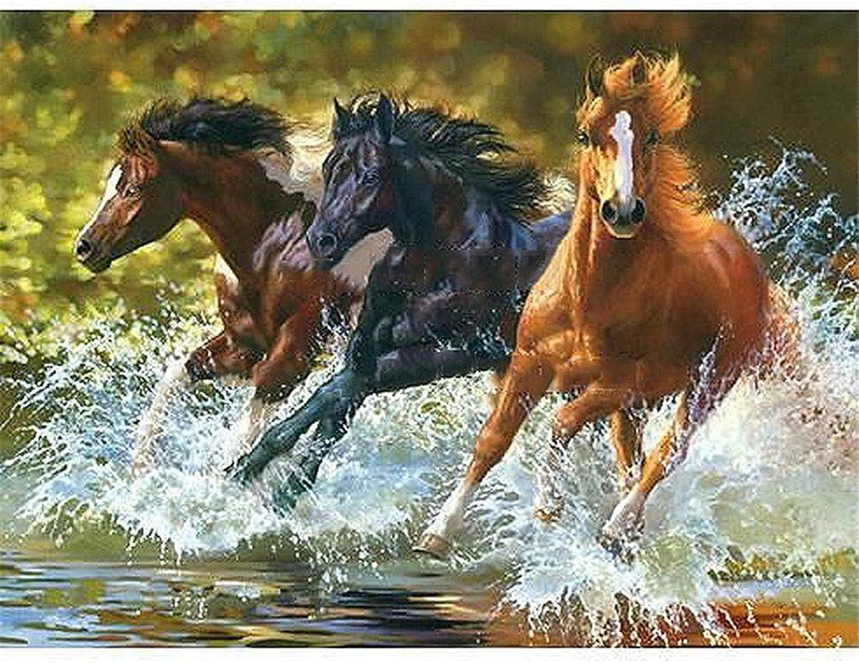 Malen Nach Zahlen DIY 3 Pferde Laufen Auf Dem Fluss Für Erwachsene Wohnkultur-Framed B07Q5Q1WN1 | Zarte