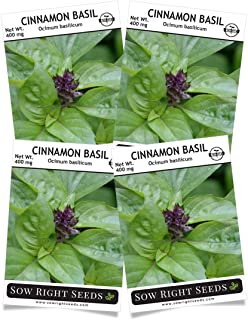Sow Right Seeds - Cinnamon Basil Seed for Planting; Non-GMO Heirloom Seeds; Instructions to Plant and Grow a Kitchen Herb Garden, Indoors or Outdoor; Great Gardening Gift (4 Packets)