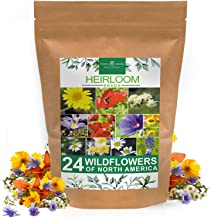 Wildflower Seeds | Bulk Mix of 24 Different Varieties of Non-GMO Wildflower Seeds 3oz | Bee and Butterfly Garden Seeds | C...