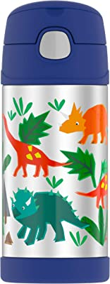 THERMOS FUNTAINER 12 Ounce Stainless Steel Vacuum Insulated Kids Straw Bottle, Dinosaurs