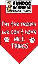 the nice things