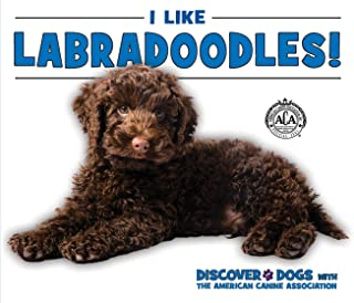 Best american canine association inc Reviews