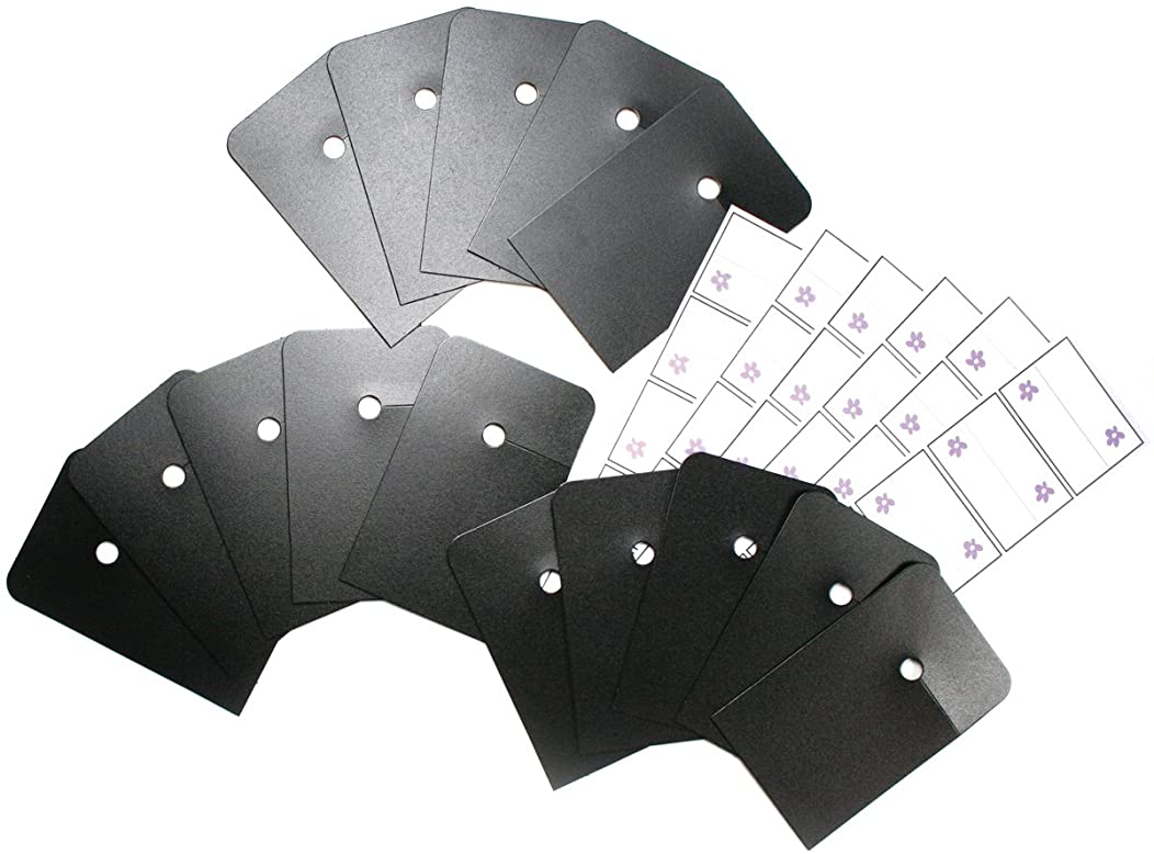 Simply Renee Clip It Up Tabs & Labels-15 Tags/30 Labels