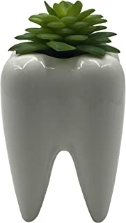 Cute Tooth Shaped Ceramic Succulent Cactus Vase Flower Pot (Plants Not Included)