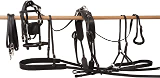 equine driving harness