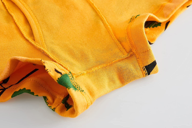 Boys Boxer Briefs Shorts Cotton Dinosaur Shark Baby Toddler Underwear for Kids