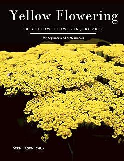 Yellow Flowering: 13 Yellow Flowering Shrubs