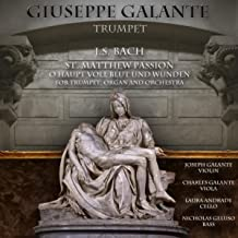 J.S. Bach: St. Matthew Passion for Trumpet, Organ and Orchestra, BWV 244: No. 54, O Haupt voll Blut und Wunden (New Version)