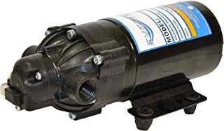 Everflo EF200E-BC - Bomba de diafragma (12 V), Color Negro