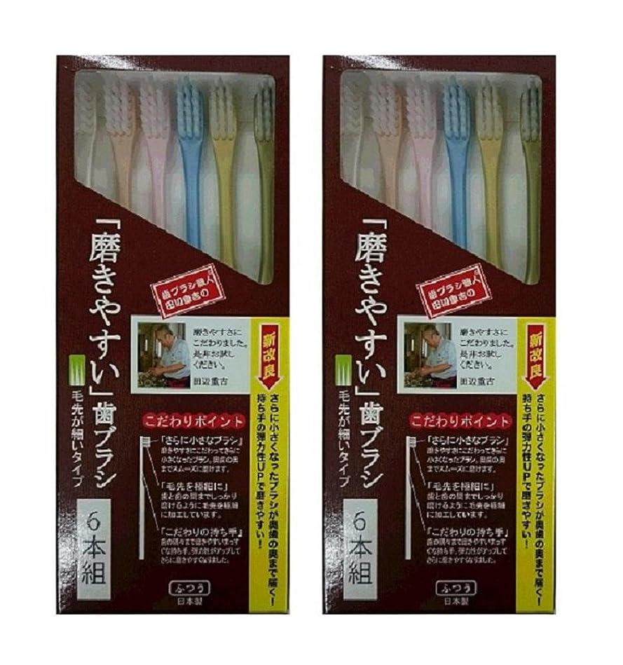 優れた騒々しい湖歯ブラシ職人 田辺重吉考案 磨きやすい歯ブラシ 先細 6本組×2個セット