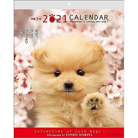 アクティブコーポレーション 2021年 カレンダー 壁掛け 森田米雄 メッセージDOG ACL-09