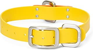 West Paw Jaunts Dog Collar, Made in USA