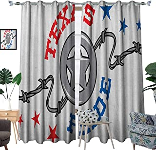 Warm Family Texas Star Patterned Drape for Glass Door Lone Star and Barb Wire United States of America South Motif Waterproof Window Curtain W96 x L108 Vermilion Blue and Pale Grey