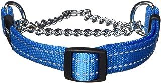 Rogz Obedience Dog Collar, Turquoise, Medium