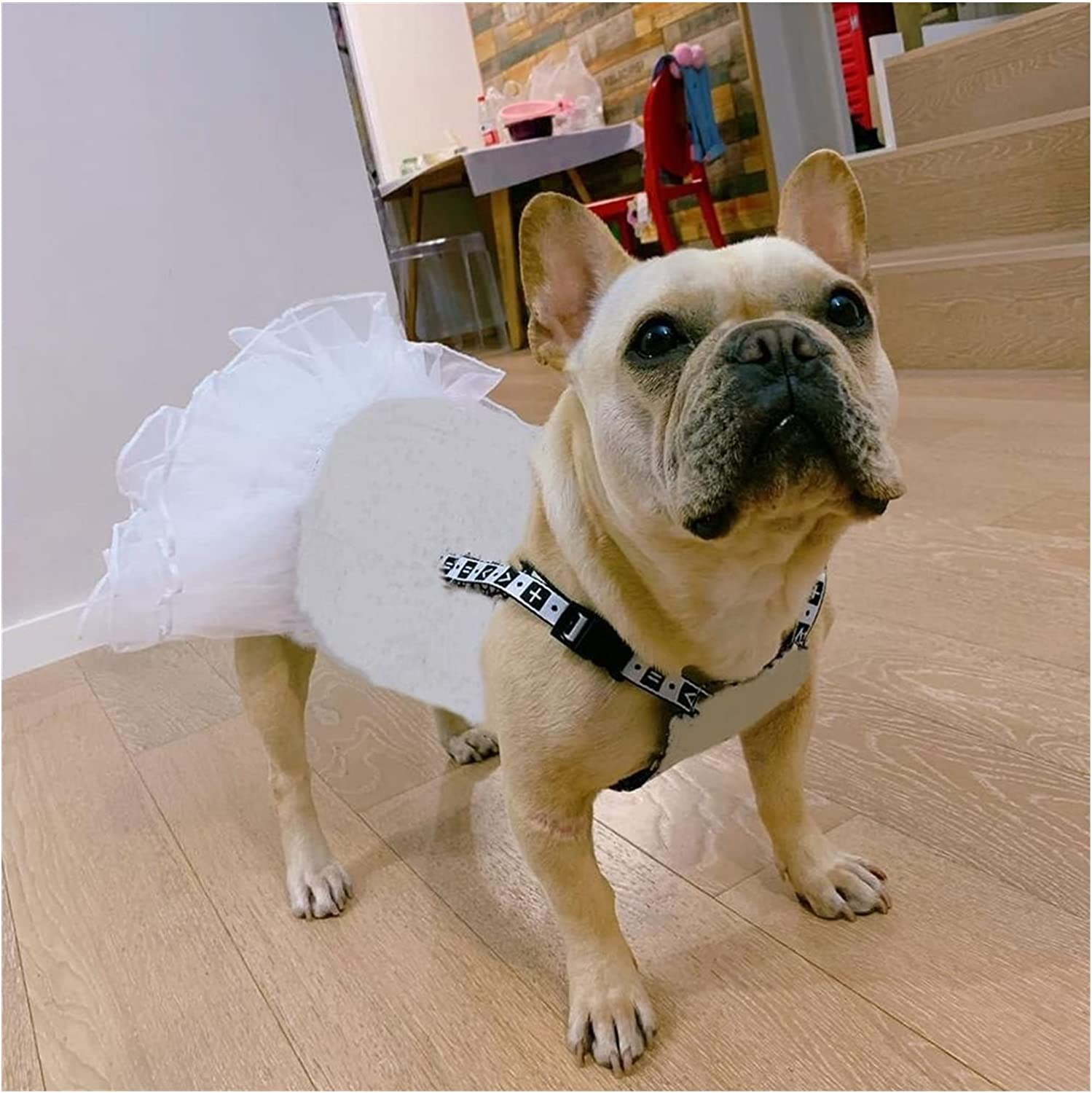 Pet Dog Clothes Princess Style Jean Dress Clothin Puppy ! Super beauty product restock quality top! Our shop most popular
