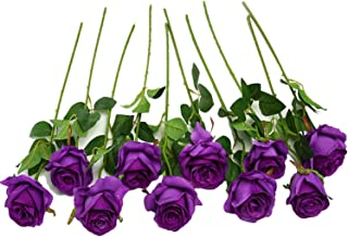 Best prince purple flowers Reviews