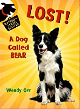 LOST! A Dog Called Bear (Rainbow Street Shelter, 1)