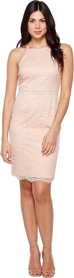 Lace Bodycon Dress with Trim