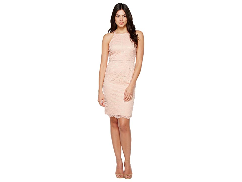 Vince Camuto Lace Bodycon Dress with Trim (Peach) Women