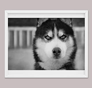 Regali di Husky Per gli Amanti Dei Cani, Poster di Varie Dimensioni o Tela, Decorazione Artistica di Husky, Regali Per Can...