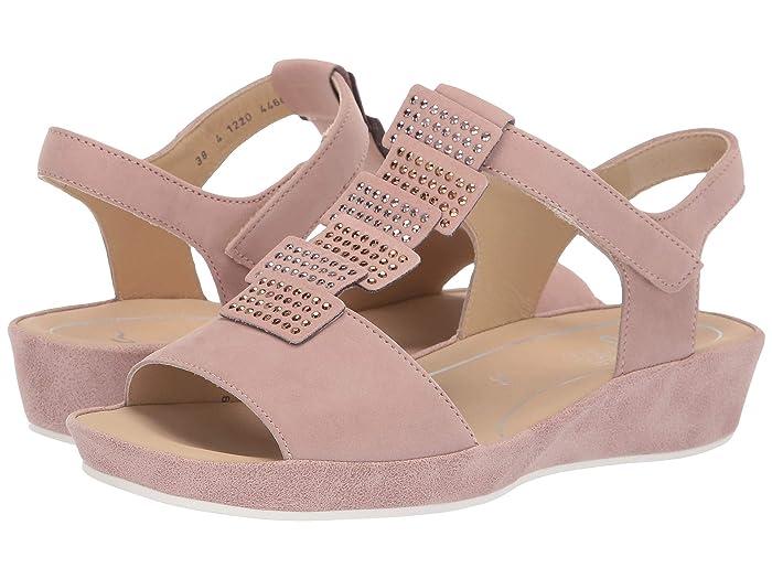 ara  Chrissy (Powder Nubuck) Womens Sandals